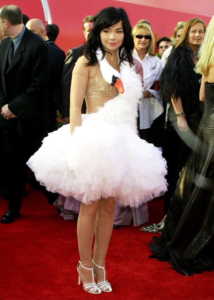 Bjork And Her Swan Dress That